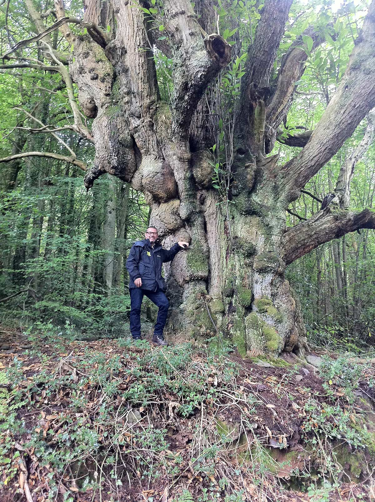 nick morgan of conserve and restore leaning on a tree in ancient woodland